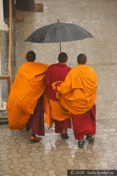 Dharamsala- razem cieplej