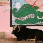 Indie2010_0544
