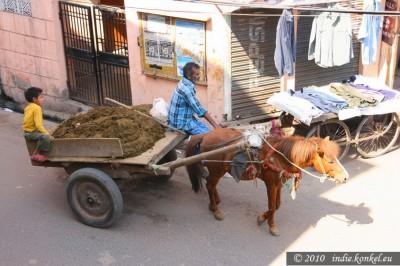obieg rzeczy w Indiach jest ekologiczny